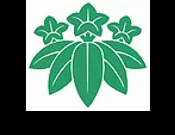 日本国際協力財団