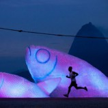 giant-fish-recycled-bottles-rio4