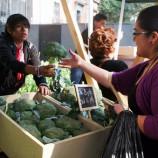 mercado-de-trueque-mexico-city-barter-market-food.jpg.492x0_q85_crop-smart