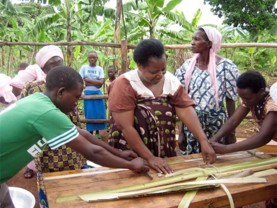 sustainable-health-enterprises-banana-pad-2