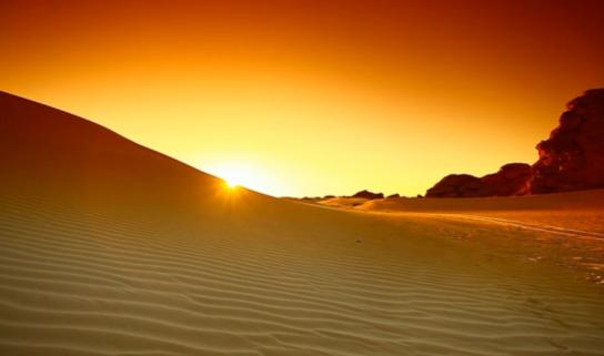 Sahara-Wonderland2