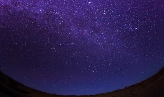 サハラ砂漠におけるきれいな ... : 動物クイズ : クイズ