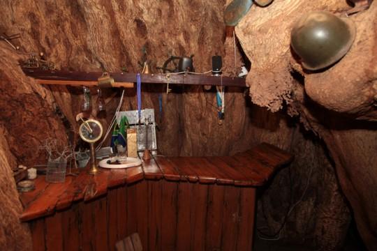 Big-Baobab-bar-South-African-Toursim4