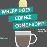 coffees_Journey_infographic.png