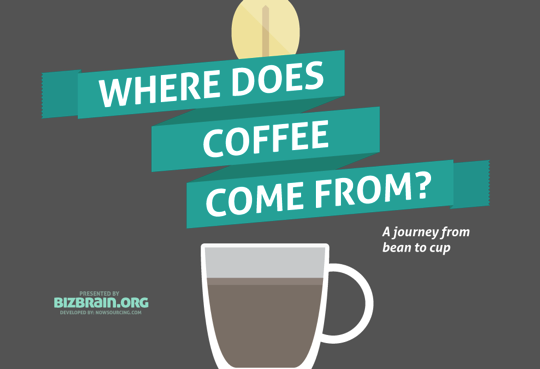 Coffees Journey infographic