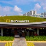 jurong-national-park-green-roof-mcdonalds-singapore-ong-ong-4-537x273