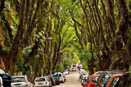 Rua-Goncalo-de-Carvalho5-537x355